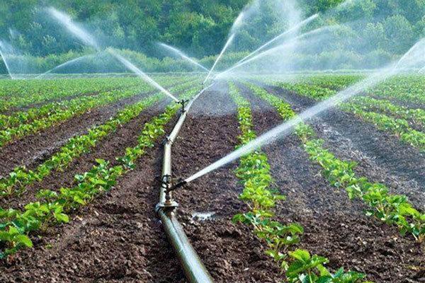 60 هکتار از اراضی کشاورزی اندیمشک به آبیاری نوین مجهز شدند