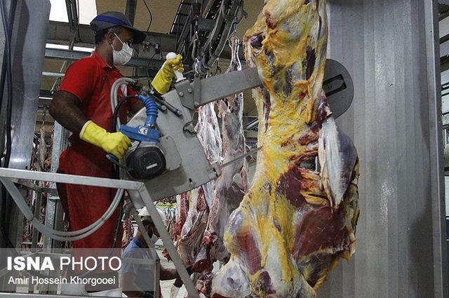 گوشت گرم می تواند ناقل 400 نوع بیماری مشترک بین انسان و دام باشد