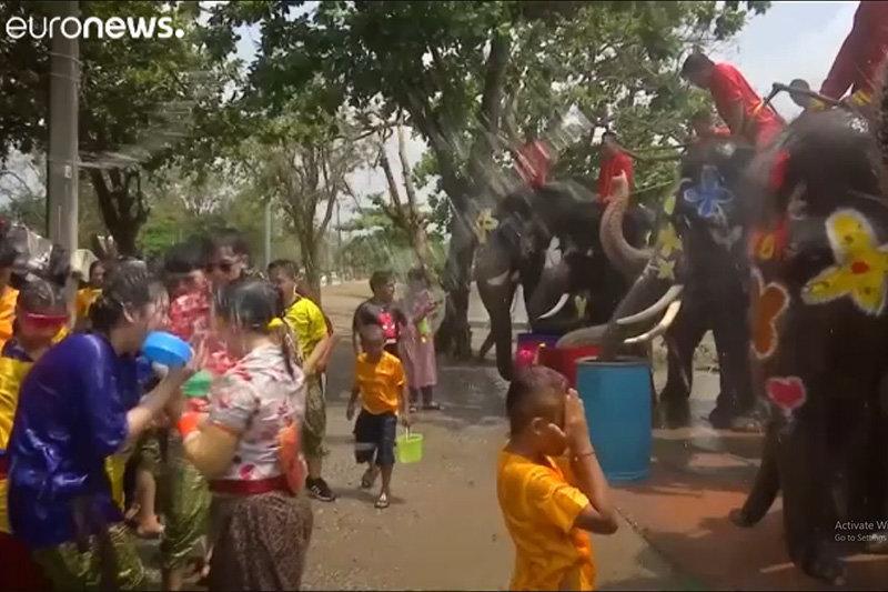 آب بازی با فیل ها در تایلند به مناسبت سال جدید