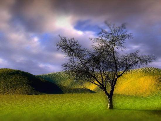 زیباترین اشعار درباره طبیعت
