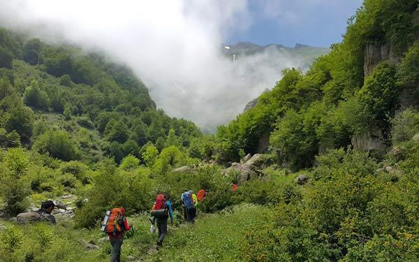 راهنمای بازدید از جنگل دوهزار